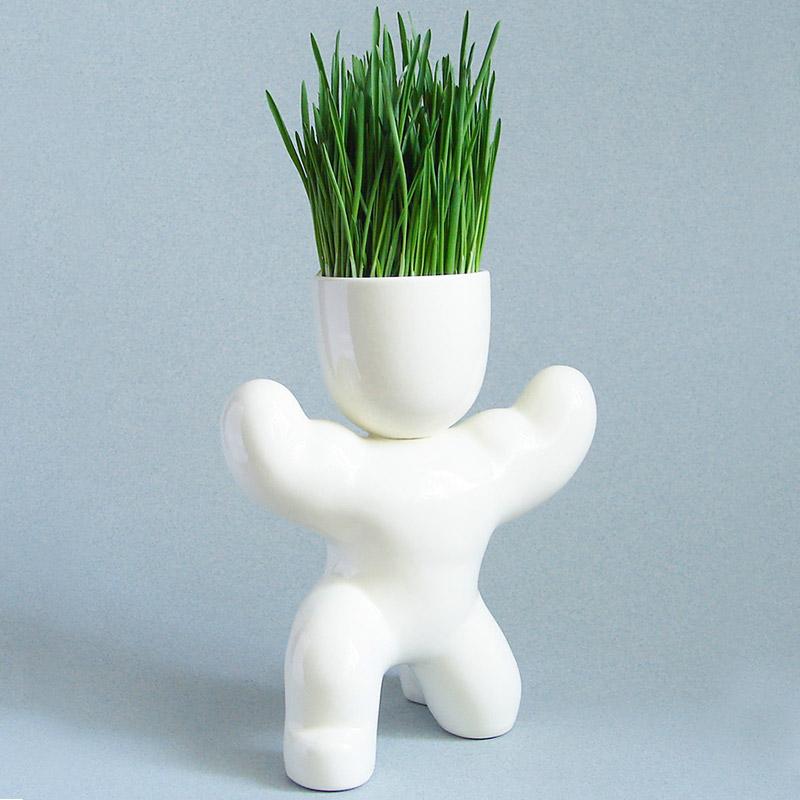 Набор для выращивания eco атлет Fine DesignВазы и кашпо<br>. Бренд - Fine Design. материал - Керамика.<br><br>популярные производители: Fine Design<br>материал: Керамика