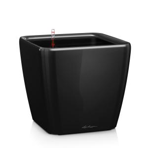 16289 Кашпо LECHUZA Квадро 50 LS Черное с системой полива и съемным горшком LechuzaВазы и кашпо<br>Кашпо QUADRO LS 50 Черный блестящий. Бренд - Lechuza. ширина/диаметр - 500. материал - Пластик. цвет - Чёрный.<br><br>популярные производители: Lechuza<br>ширина/диаметр: 500<br>материал: Пластик<br>цвет: Чёрный