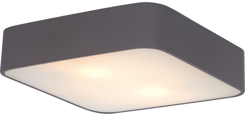 Накладной потолочный светильник A7210PL-2BK ARTE Lampнакладные<br>A7210PL-2BK. Бренд - ARTE Lamp. материал плафона - стекло. цвет плафона - белый. тип цоколя - E27. тип лампы - накаливания или LED. ширина/диаметр - 300. мощность - 60. количество ламп - 2.<br><br>популярные производители: ARTE Lamp<br>материал плафона: стекло<br>цвет плафона: белый<br>тип цоколя: E27<br>тип лампы: накаливания или LED<br>ширина/диаметр: 300<br>максимальная мощность лампочки: 60<br>количество лампочек: 2