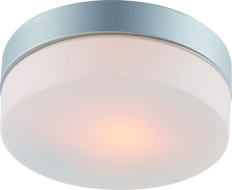 Накладной потолочный светильник A3211PL-1SI