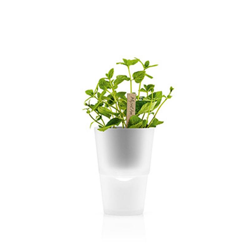 Горшок с функцией естественного полива herb pot Fine DesignВазы и кашпо<br>. Бренд - Fine Design. материал - фарфор, стекло, пластик, нейлон.<br><br>популярные производители: Fine Design<br>материал: фарфор, стекло, пластик, нейлон